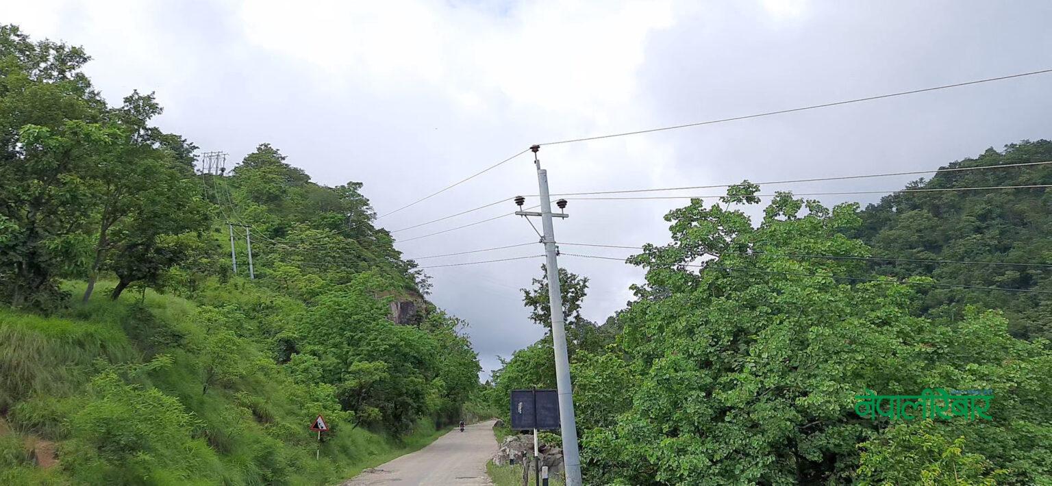 कोहलपुर–सुर्खेत लाइन विस्तारका लागि १३ हजार बढी रुख काटिदै